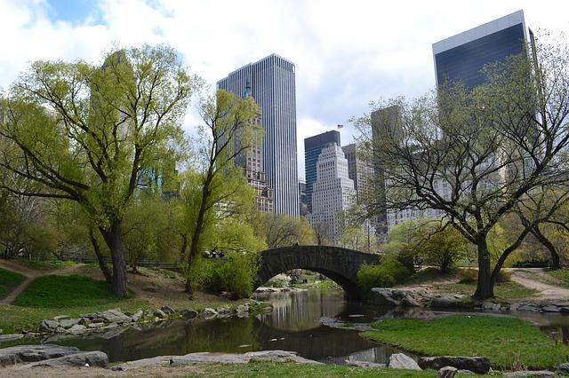 Gapstow-Bridge-central-park